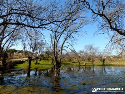 Cañón Río Aulencia-Embalse Valmenor; viriato pueblos madrid montejo de la sierra pueblos cercanos